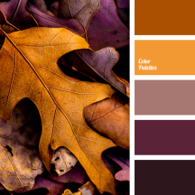 color-palette-2595